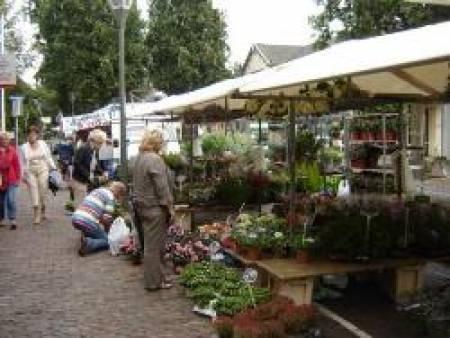 markt naaldwijk openingstijden